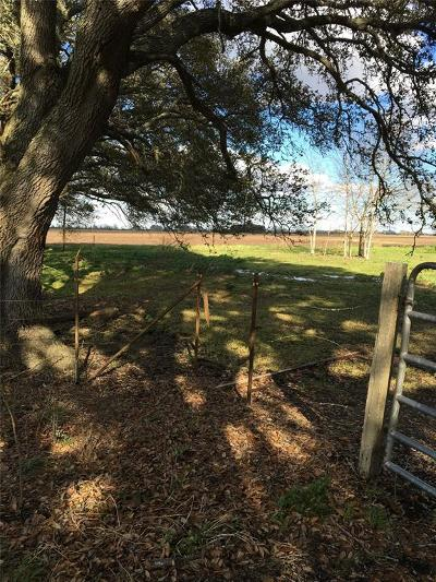 Fort Bend County Country Home/Acreage For Sale: 10227 Boone Road