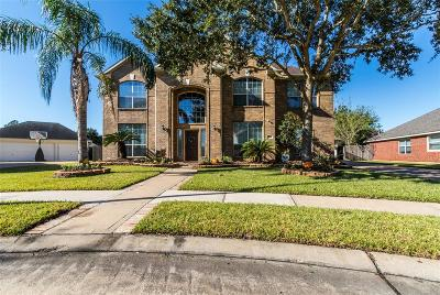 Pearland Single Family Home For Sale: 3214 Princess Bay Court Court