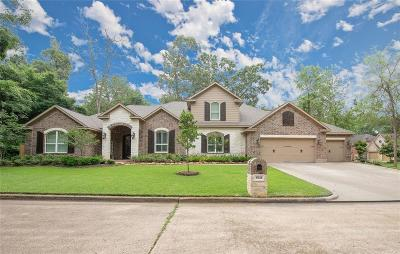 Montgomery Single Family Home For Sale: 3502 Lazy Hollow Lane