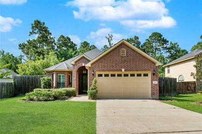 Conroe Single Family Home For Sale: 1306 Briar Cliff Street