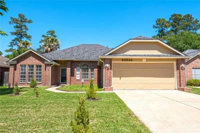 Tomball Single Family Home For Sale: 22542 Red Pine Drive