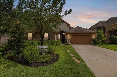 Katy Single Family Home For Sale: 5903 Verde Place Lane