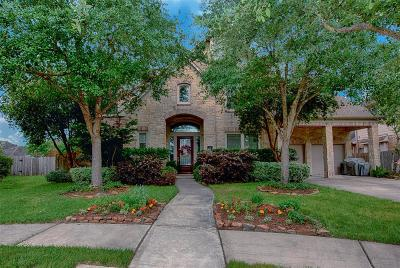 Single Family Home For Sale: 1041 Cayman Bend Lane