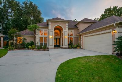 Houston Single Family Home For Sale: 13702 Camelotcentre Court