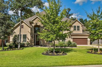 Montgomery Single Family Home For Sale: 123 Poppy Hills Drive