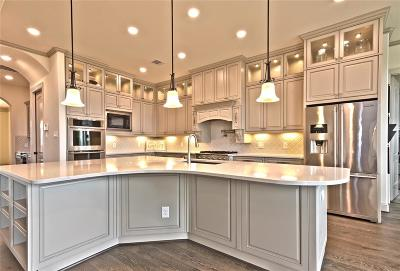 Friendswood Single Family Home For Sale: 1101 Twilight Springs Court
