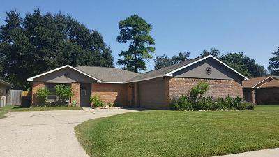 Cypress Single Family Home For Sale: 14118 Sylvia Drive