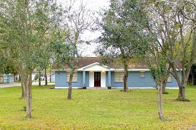 Pearland Single Family Home For Sale: 16900 Wellborne Road