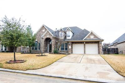 Tomball Single Family Home For Sale: 12618 Wandering Streams Drive
