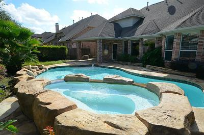 Sugar Land Single Family Home For Sale: 803 Doscher Lane