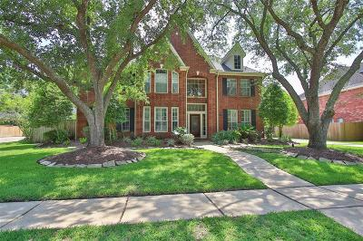 Friendswood Single Family Home For Sale: 1804 Streamside Drive