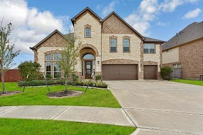 Tomball Single Family Home For Sale: 13303 Coolidge Creek Drive