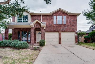 Houston Single Family Home For Sale: 17606 Meadow Crossing Lane