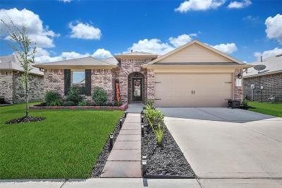 Tomball Single Family Home For Sale: 9719 Jacy Creek Drive