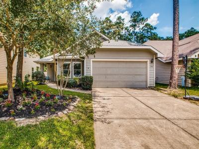 The Woodlands Single Family Home For Sale: 170 N Vesper Bend Circle