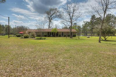 Conroe Single Family Home For Sale: 17958 Fm 2090 Road
