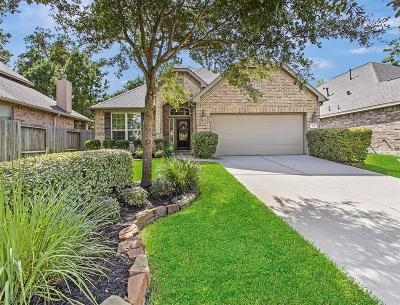 Montgomery TX Single Family Home For Sale: $284,900
