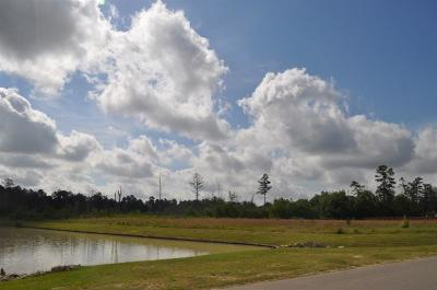 Spring Residential Lots & Land For Sale: 27514 S Lazy Meadow Way
