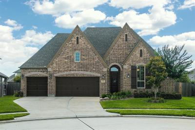 Friendswood Single Family Home For Sale: 905 Cactus Ridge Court
