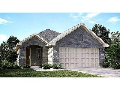 New Caney Single Family Home For Sale: 18847 Genova Bay Court
