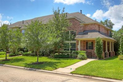 The Woodlands Condo/Townhouse For Sale: 55 Ginger Jar Street