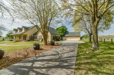 Tomball Country Home/Acreage For Sale: 11922 Holderrieth Road