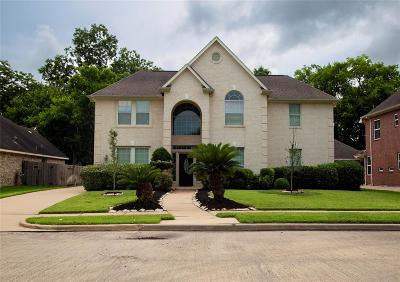 Sugar Land Single Family Home For Sale: 1427 Stone Canyon Drive
