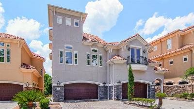 Montgomery Single Family Home For Sale: 114 La Vie Drive