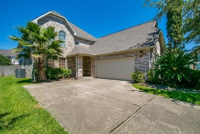 Houston Single Family Home For Sale: 3210 Enclave Trail