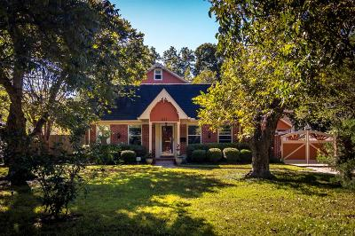 Houston Single Family Home For Sale: 231 W 33rd Street