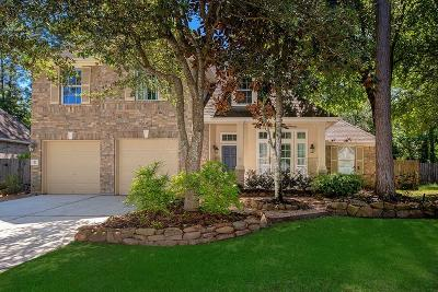 The Woodlands Single Family Home For Sale: 10 Hobbit Glen Drive