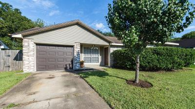 Pearland Single Family Home For Sale: 1039 Woodbridge Avenue