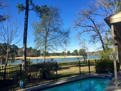 Houston Single Family Home For Sale: 3210 Deep River Court
