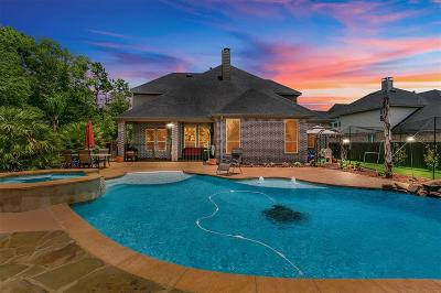 Conroe Single Family Home For Sale: 17030 Harpers Way