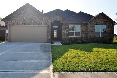 League City Single Family Home For Sale: 1633 Laslina Lane