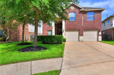 Katy Single Family Home For Sale: 25806 Orchard Knoll Lane