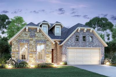 Baytown Single Family Home For Sale: 206 San Gabriel Drive