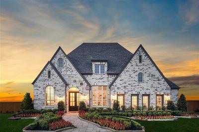 Willis Single Family Home For Sale: 314 Irenic Mist Court