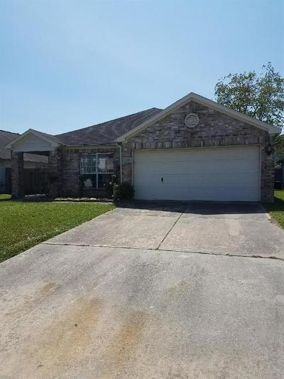 Houston Single Family Home For Sale: 12206 Greenmesa Dr Drive