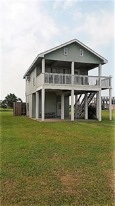 Port Bolivar Single Family Home For Sale: 1309 Galveston Avenue