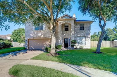 Sugar Land Single Family Home For Sale: 5303 Riverhollow Court