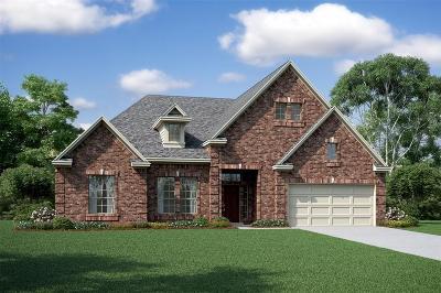 Houston Single Family Home For Sale: 10014 Lott Falls Drive