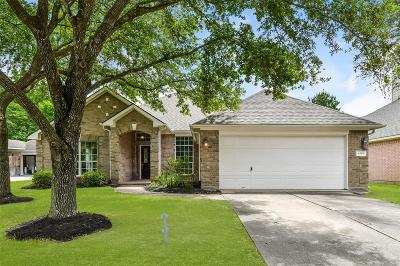 League City Single Family Home For Sale: 4519 Canyon Crest Drive