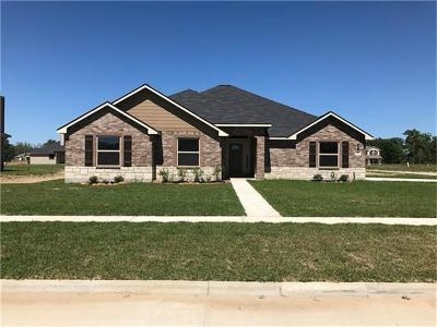 Dayton Single Family Home For Sale: 102 Ella Street