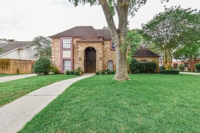 Houston Single Family Home For Sale: 1038 Ivy Wall Drive