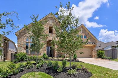 The Woodlands Single Family Home For Sale: 4 Alamito Canyon Place