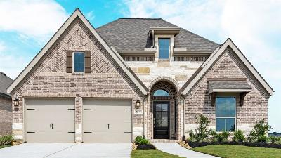 Manvel Single Family Home For Sale: 2247 Blackhawk Ridge Lane