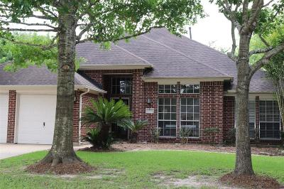 Pearland Single Family Home For Sale: 10010 Hidden Falls Drive