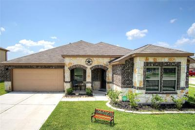 Manvel Single Family Home For Sale: 33 Indian Palms Drive
