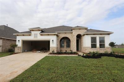 Tomball Single Family Home For Sale: 21515 Albertine